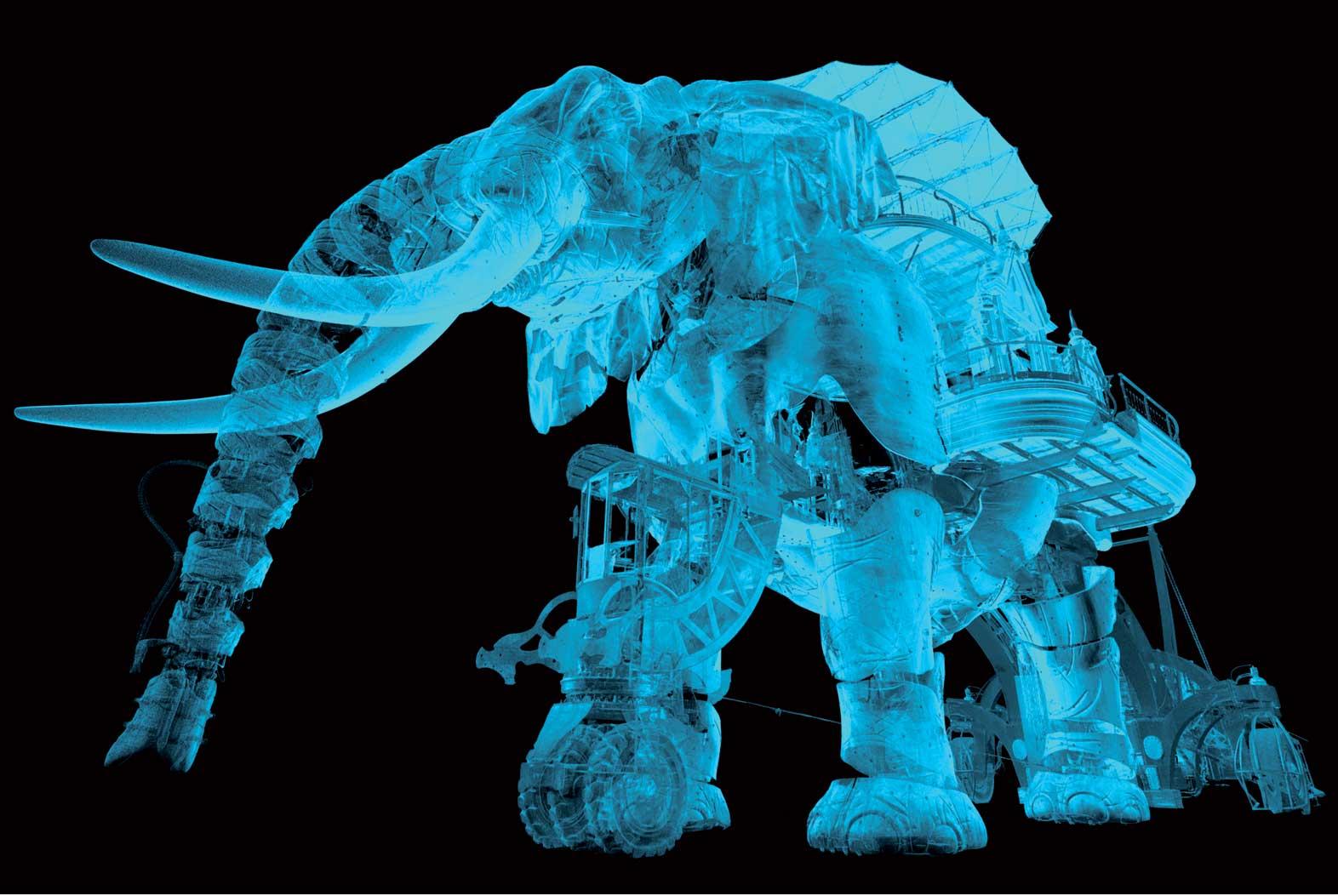 Elephant-plan-1
