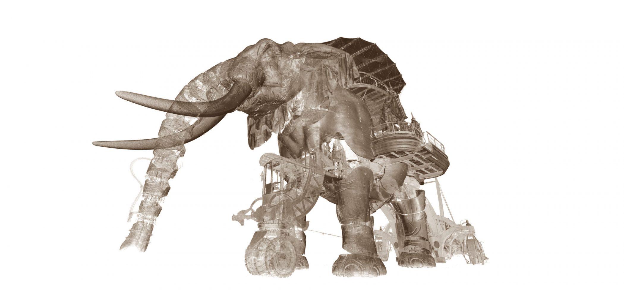 Scanning Laser 3D Du Grand Elephant
